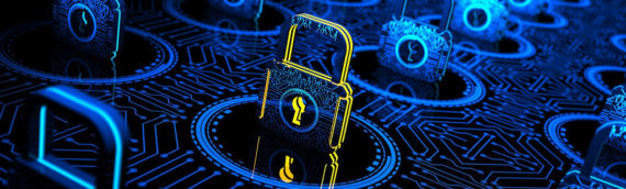 CYBER SECURITY PRIVACY SPECIALIST
